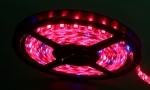 LED Band Full Spectrum 5m